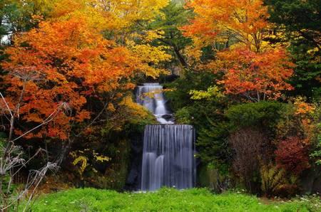 バンビの里の滝①.jpg